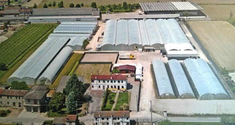 Foto aerea del vivaio Li.Pa. Piantine.