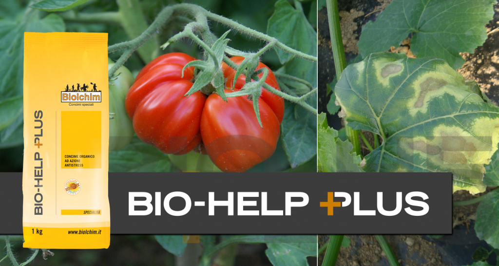 Superamento stress: Bio-Help diventa Bio-Help Plus